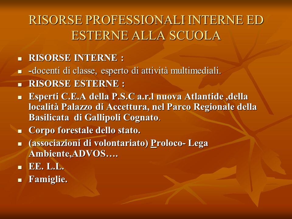 RISORSE PROFESSIONALI INTERNE ED ESTERNE ALLA SCUOLA