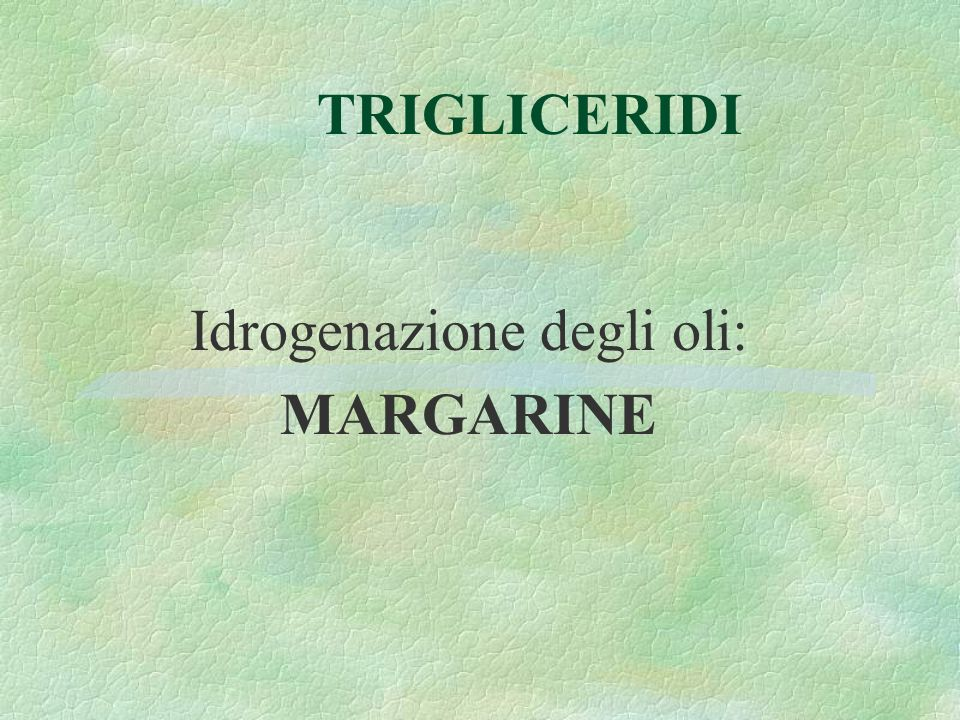 Idrogenazione degli oli: MARGARINE