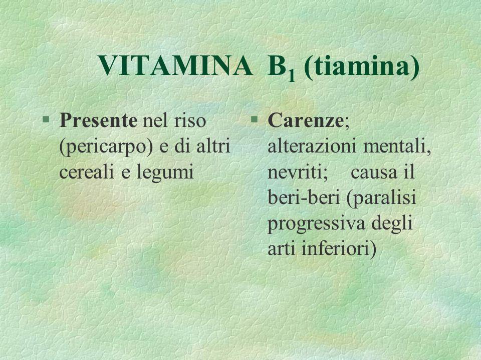 VITAMINA B1 (tiamina) Presente nel riso (pericarpo) e di altri cereali e legumi.