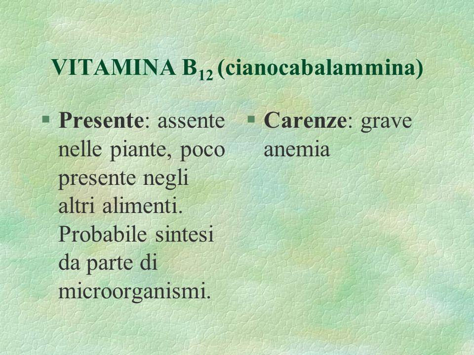 VITAMINA B12 (cianocabalammina)