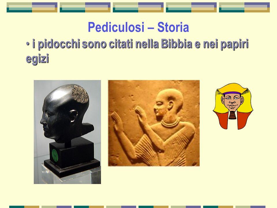 Pediculosi – Storia i pidocchi sono citati nella Bibbia e nei papiri egizi