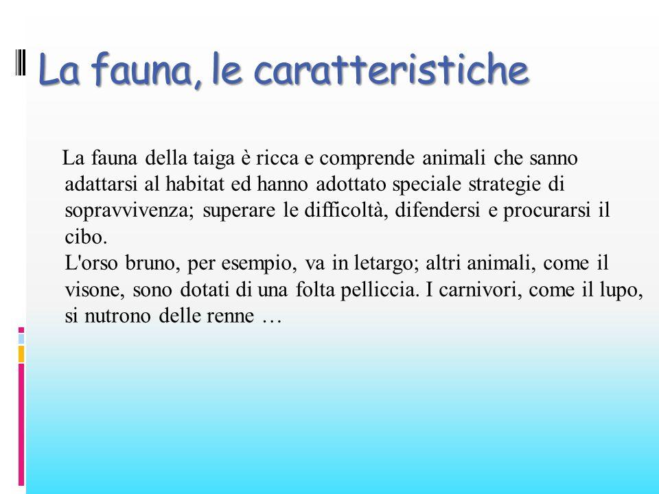 La fauna, le caratteristiche
