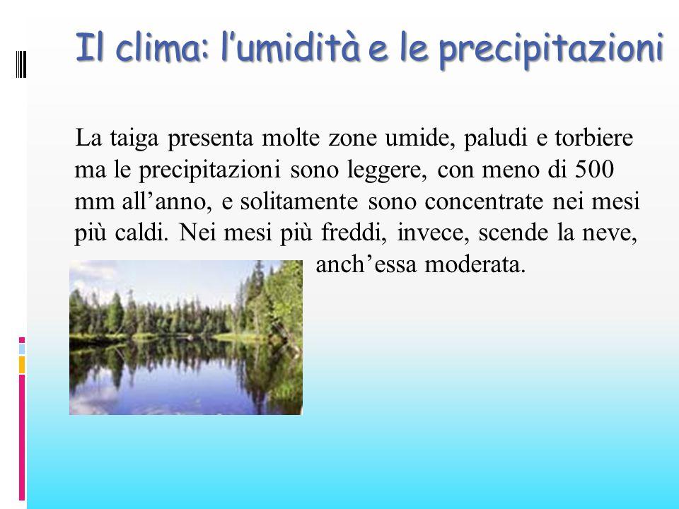 Il clima: l'umidità e le precipitazioni