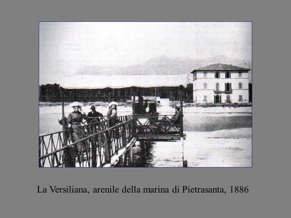 La Versiliana, arenile della marina di Pietrasanta, 1886