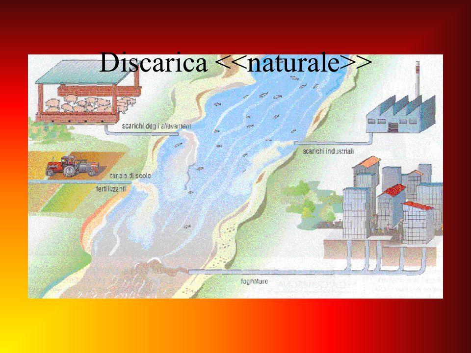 Discarica <<naturale>>