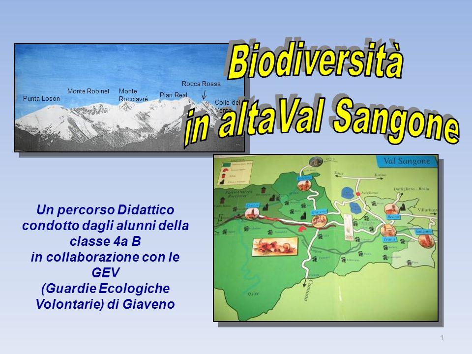 Biodiversità in altaVal Sangone