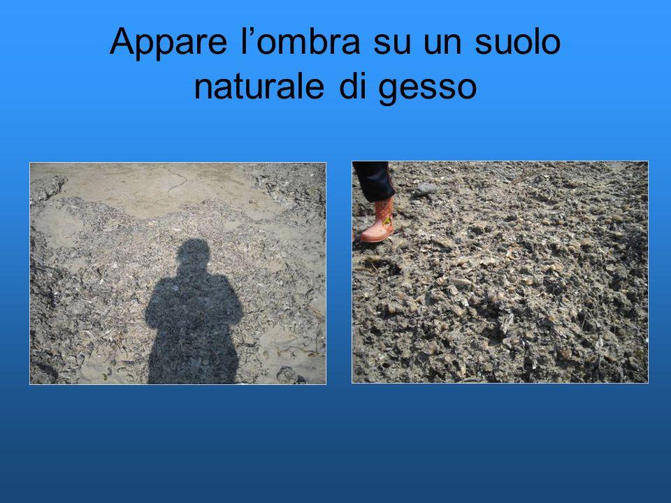 Appare l'ombra su un suolo naturale di gesso