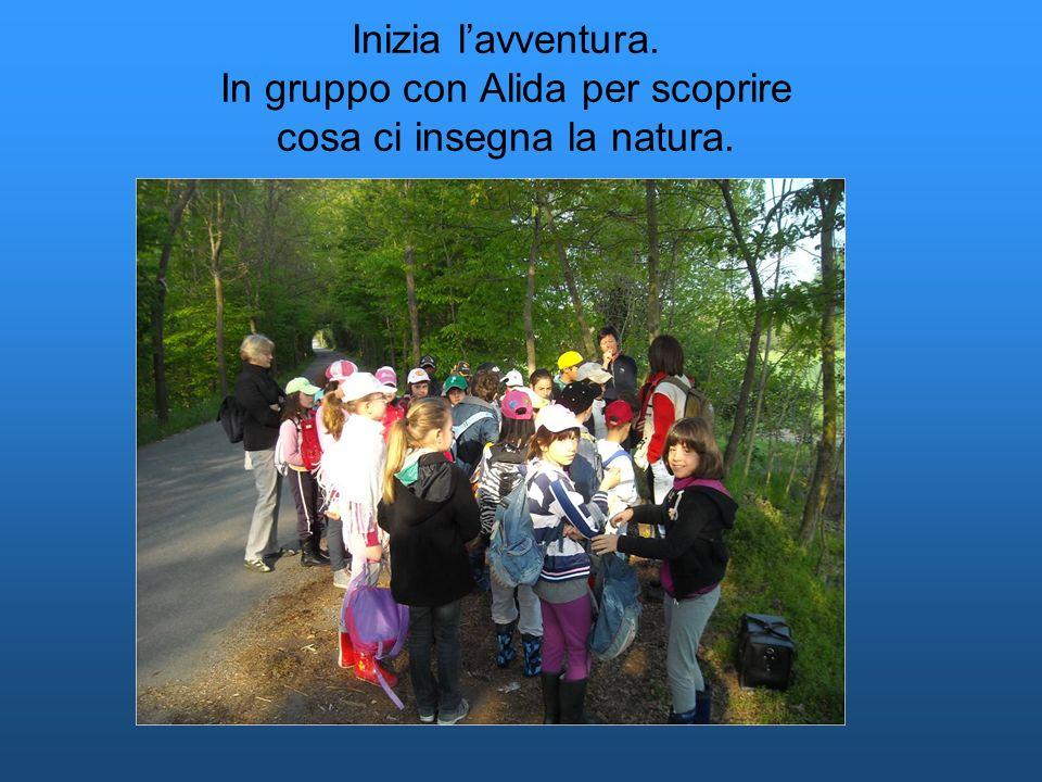 Inizia l'avventura. In gruppo con Alida per scoprire cosa ci insegna la natura.