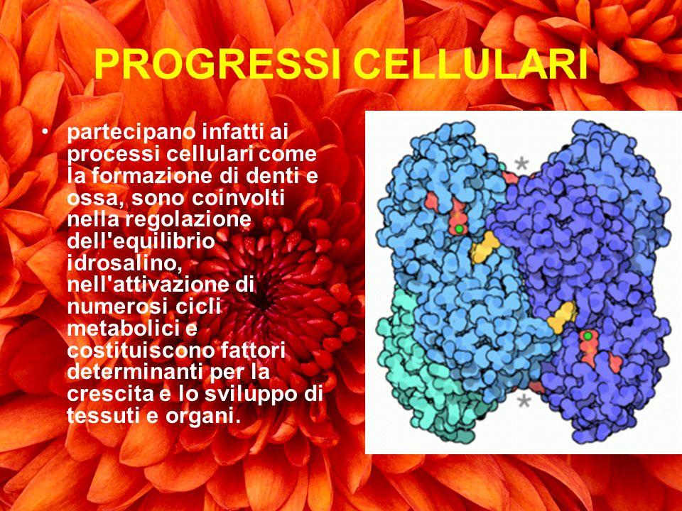 PROGRESSI CELLULARI