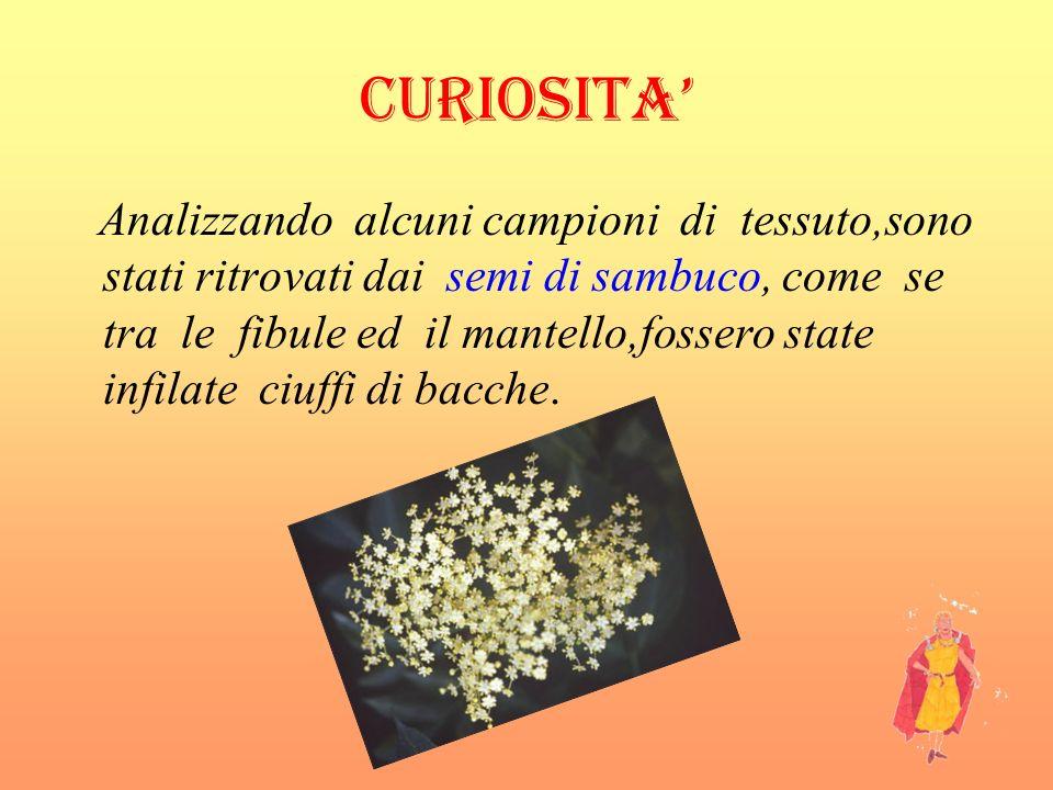 CURIOSITA'