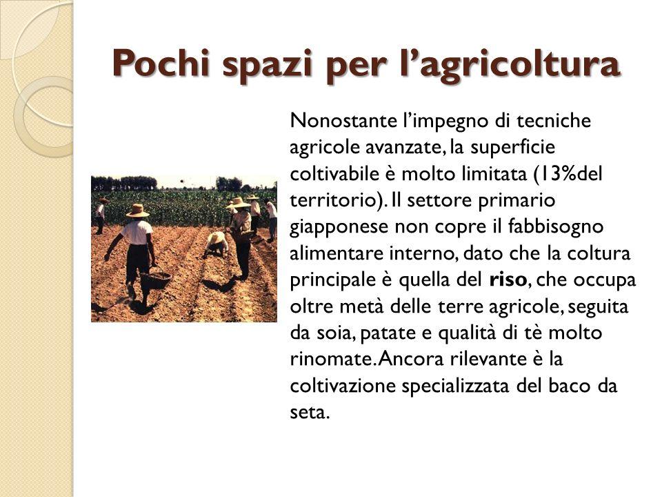 Pochi spazi per l'agricoltura