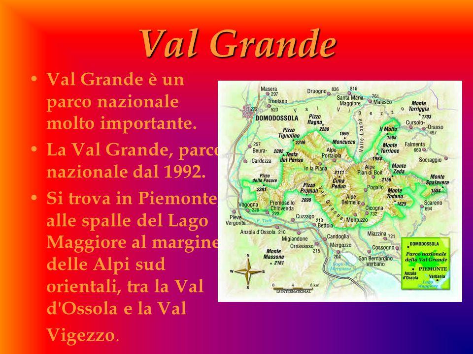 Val Grande Val Grande è un parco nazionale molto importante.