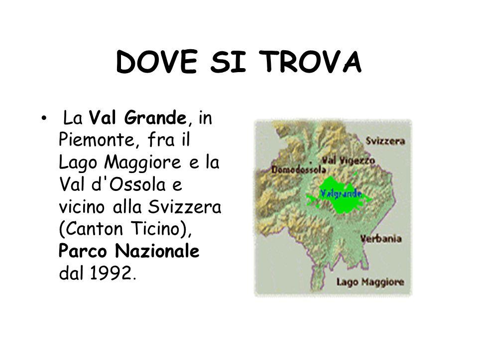 Parchi nazionali del piemonte ppt scaricare for Arredo ingross 3 dove si trova