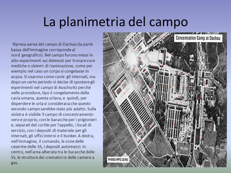 La planimetria del campo