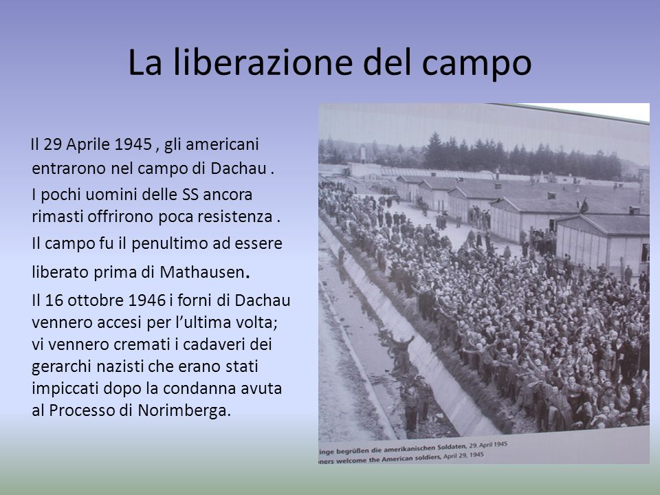 La liberazione del campo