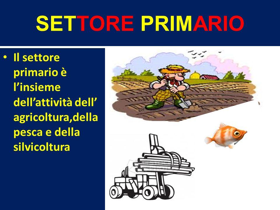 SETTORE PRIMARIO Il settore primario è l'insieme dell'attività dell' agricoltura,della pesca e della silvicoltura.