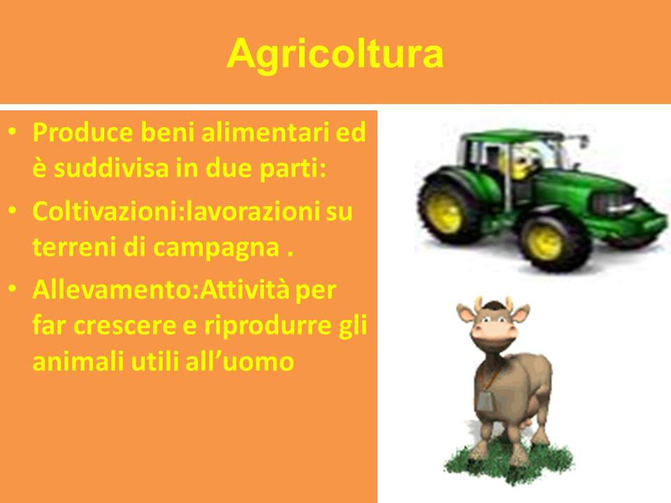 Agricoltura Produce beni alimentari ed è suddivisa in due parti: