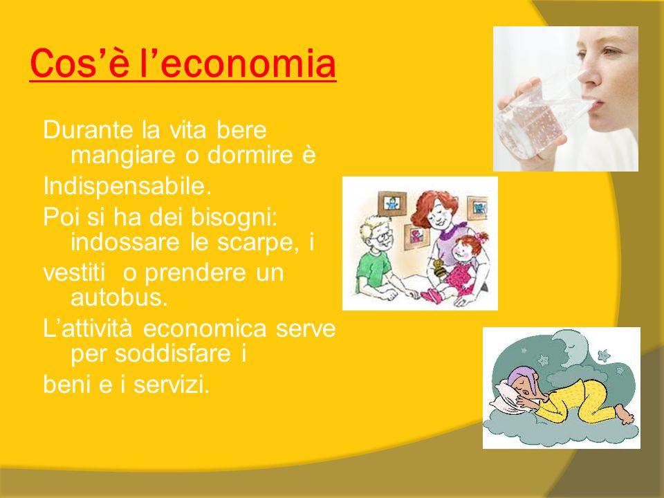 Cos'è l'economia