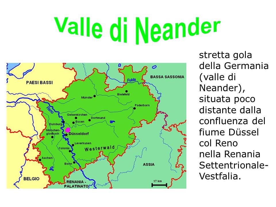 Valle di Neander