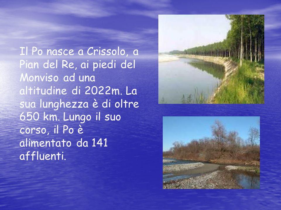 Il Po nasce a Crissolo, a Pian del Re, ai piedi del Monviso ad una altitudine di 2022m. La sua lunghezza è di oltre 650 km. Lungo il suo corso, il Po è alimentato da 141 affluenti.