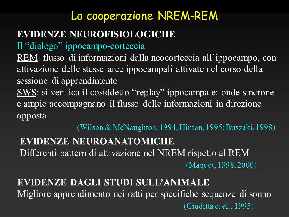 La cooperazione NREM-REM
