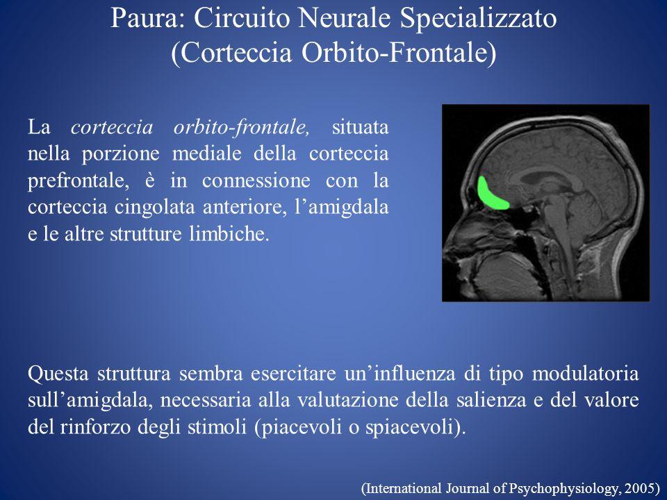 Paura: Circuito Neurale Specializzato (Corteccia Orbito-Frontale)
