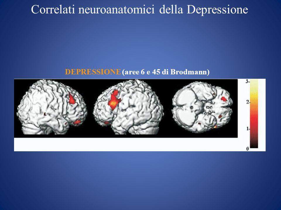 Correlati neuroanatomici della Depressione