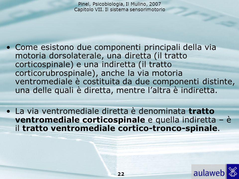 Come esistono due componenti principali della via motoria dorsolaterale, una diretta (il tratto corticospinale) e una indiretta (il tratto corticorubrospinale), anche la via motoria ventromediale è costituita da due componenti distinte, una delle quali è diretta, mentre l'altra è indiretta.