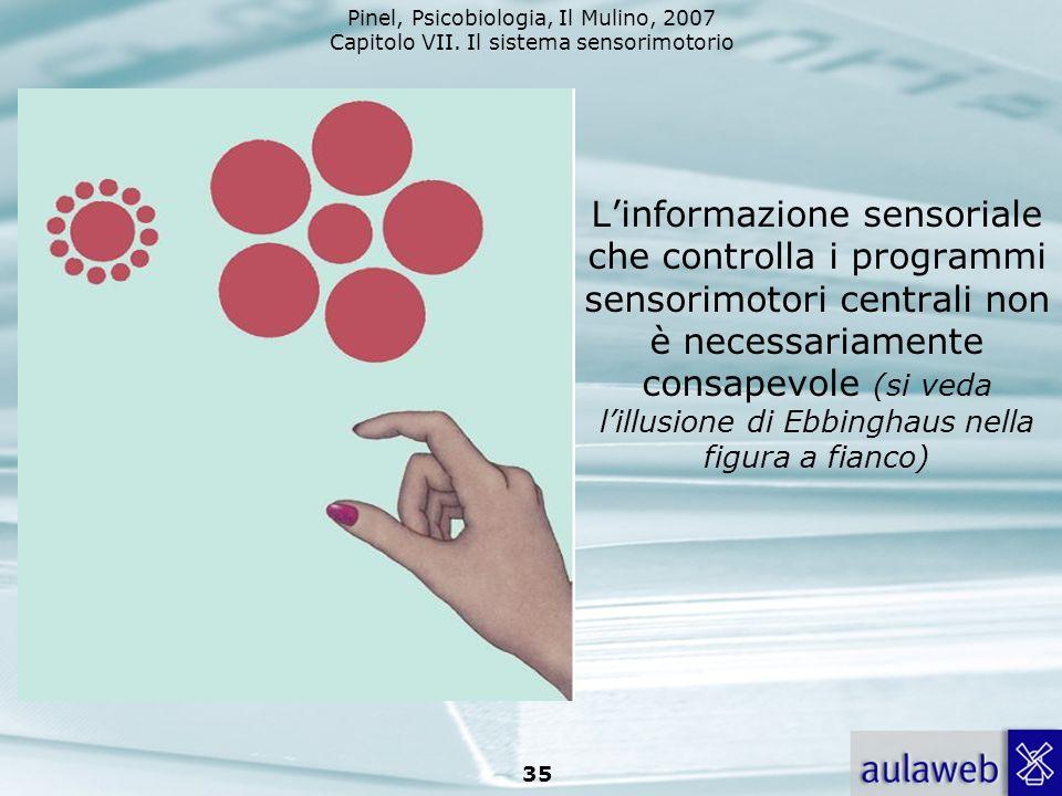 L'informazione sensoriale che controlla i programmi sensorimotori centrali non è necessariamente consapevole (si veda l'illusione di Ebbinghaus nella figura a fianco)