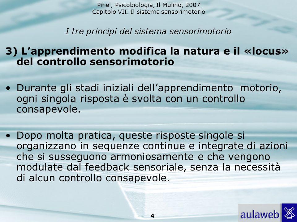 I tre principi del sistema sensorimotorio