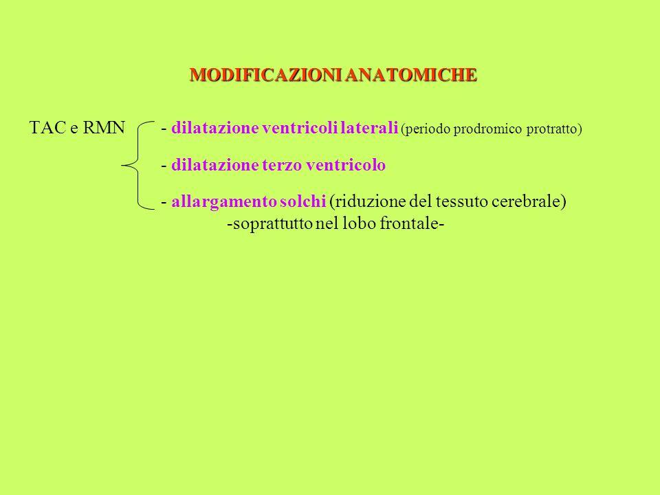 MODIFICAZIONI ANATOMICHE