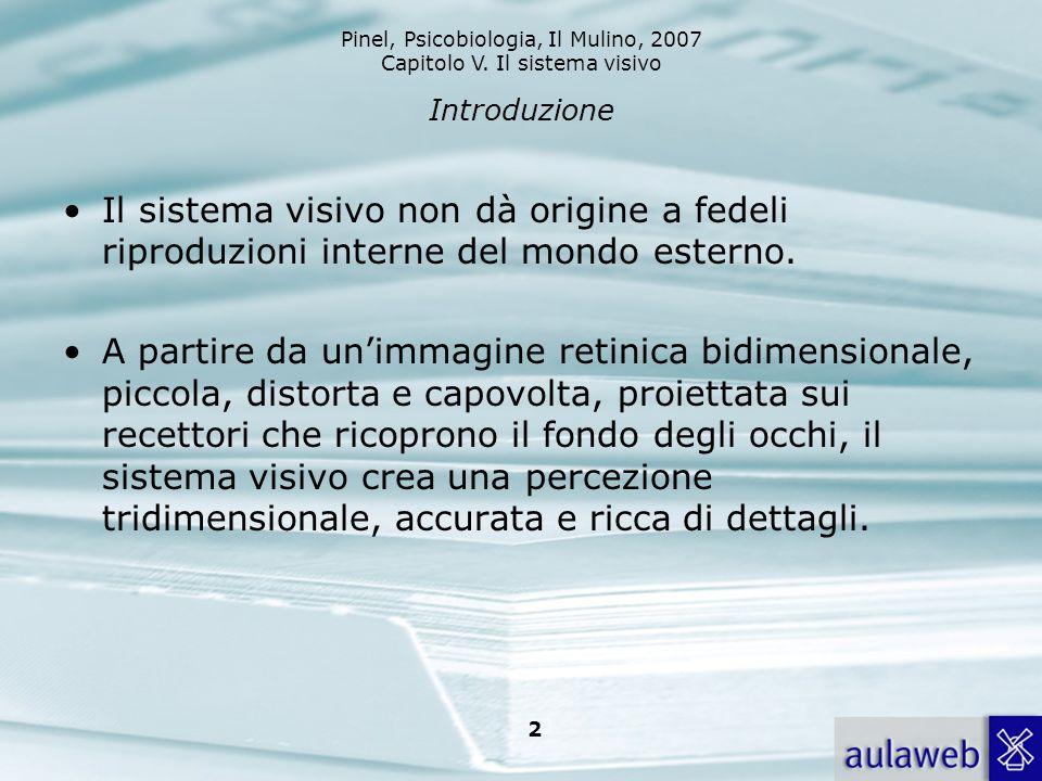 Introduzione Il sistema visivo non dà origine a fedeli riproduzioni interne del mondo esterno.