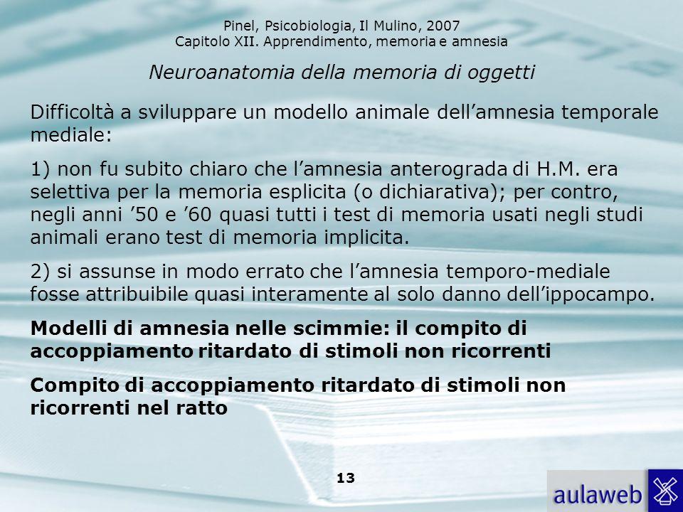 Neuroanatomia della memoria di oggetti