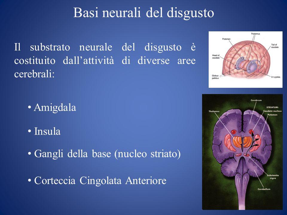Basi neurali del disgusto