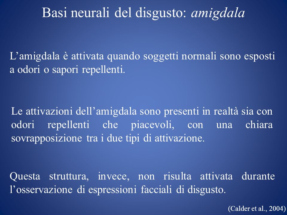 Basi neurali del disgusto: amigdala