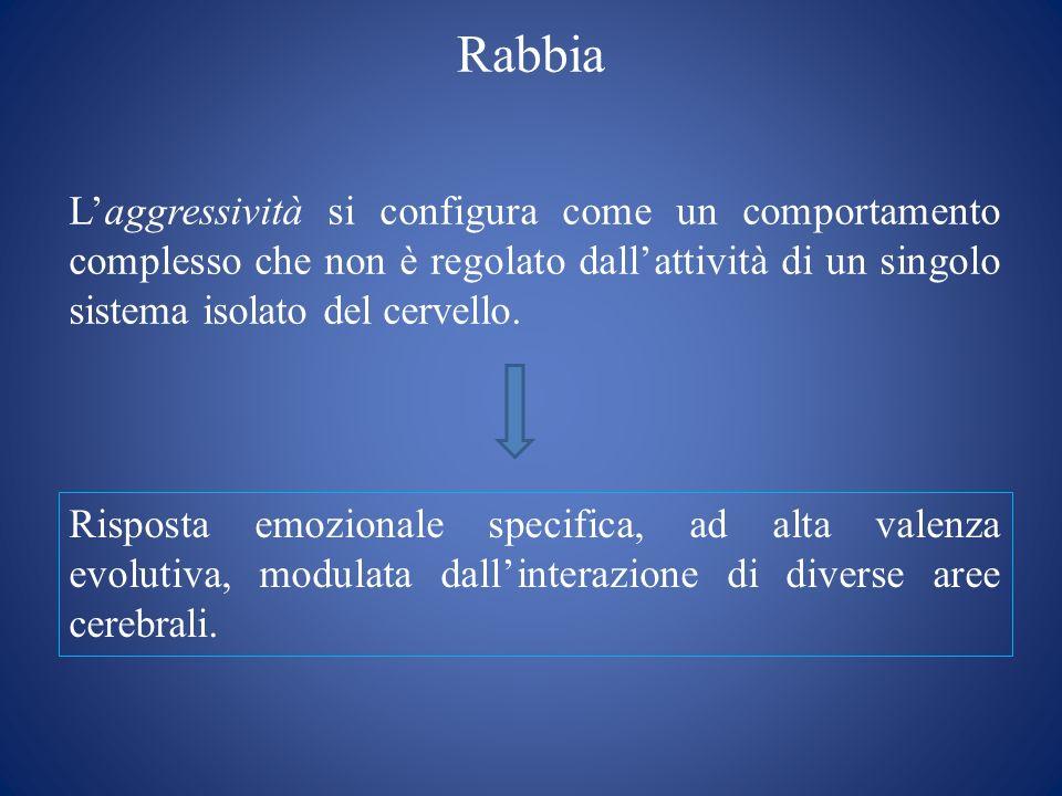 Rabbia L'aggressività si configura come un comportamento complesso che non è regolato dall'attività di un singolo sistema isolato del cervello.