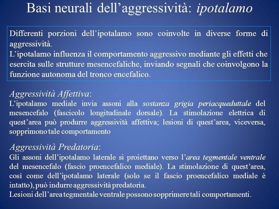 Basi neurali dell'aggressività: ipotalamo