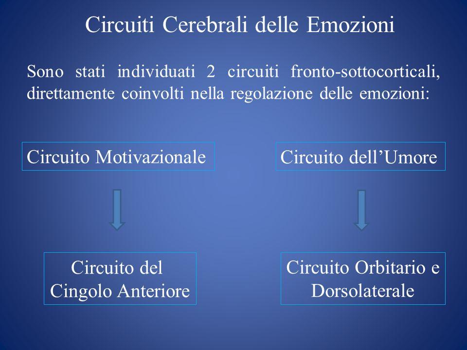 Circuiti Cerebrali delle Emozioni