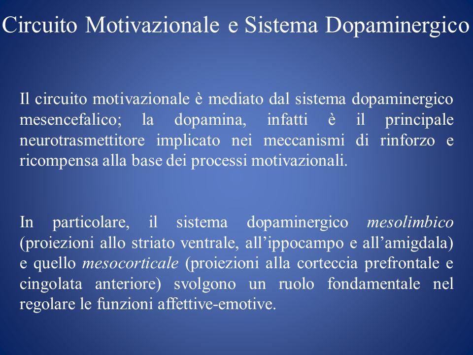 Circuito Motivazionale e Sistema Dopaminergico