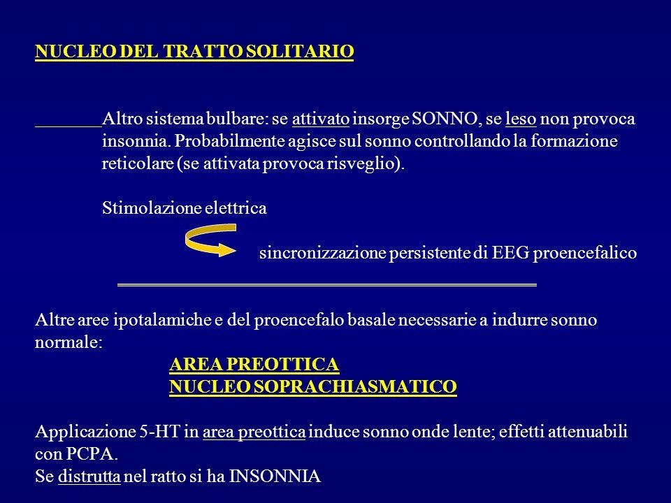 NUCLEO DEL TRATTO SOLITARIO