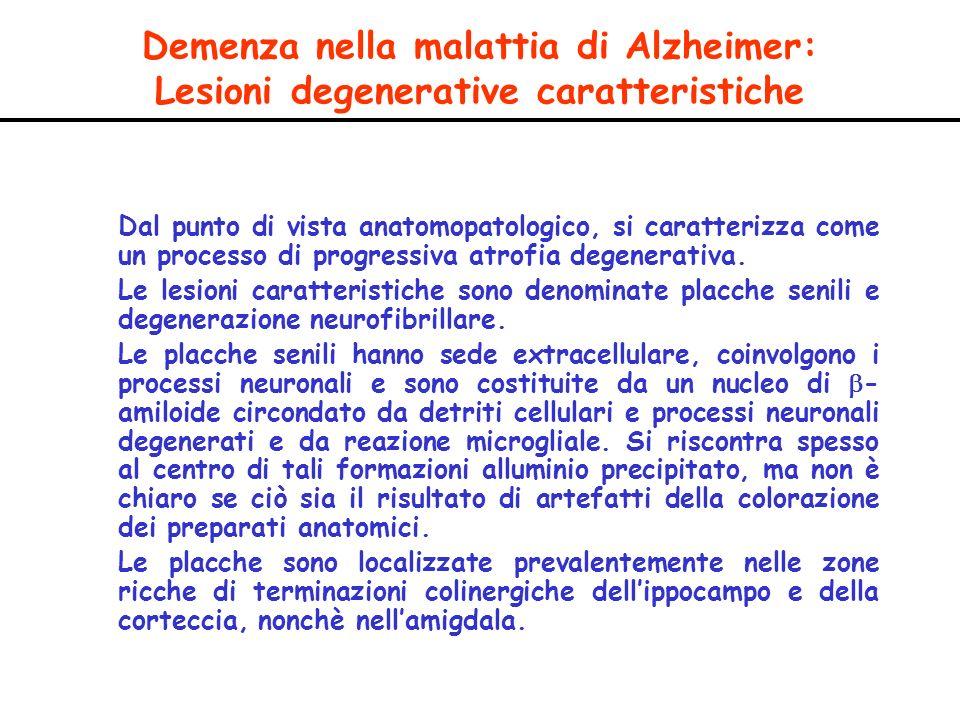 Demenza nella malattia di Alzheimer: Lesioni degenerative caratteristiche