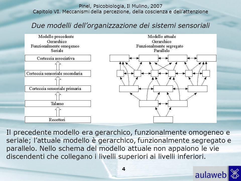 Due modelli dell'organizzazione dei sistemi sensoriali