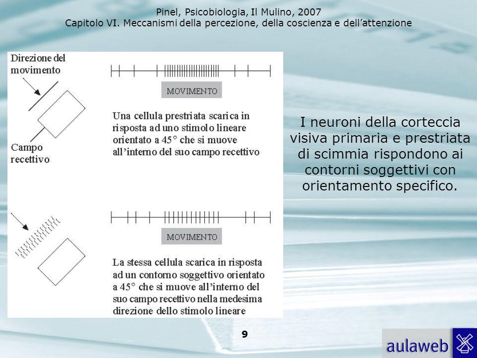 I neuroni della corteccia visiva primaria e prestriata di scimmia rispondono ai contorni soggettivi con orientamento specifico.