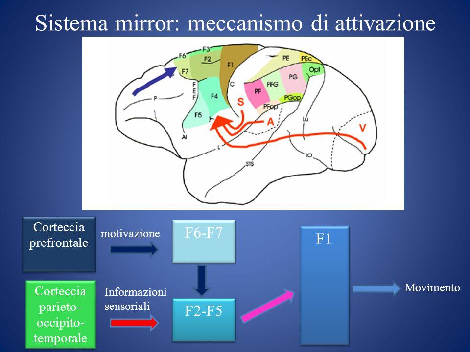 Sistema mirror: meccanismo di attivazione