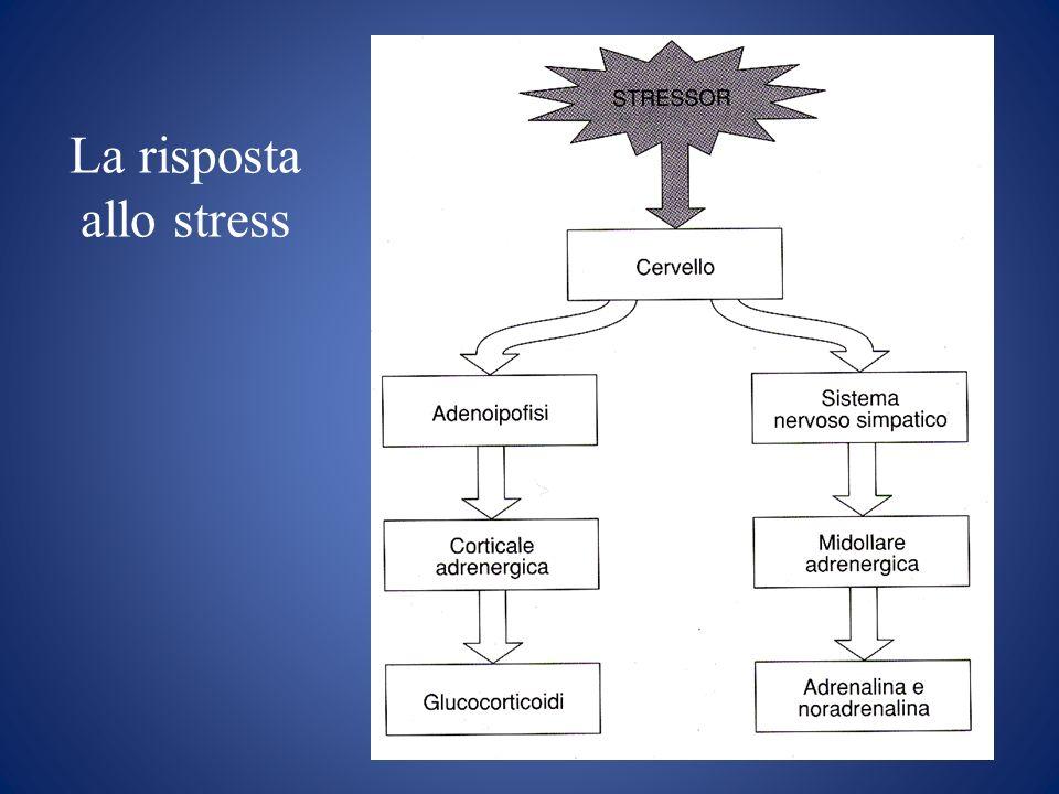 La risposta allo stress