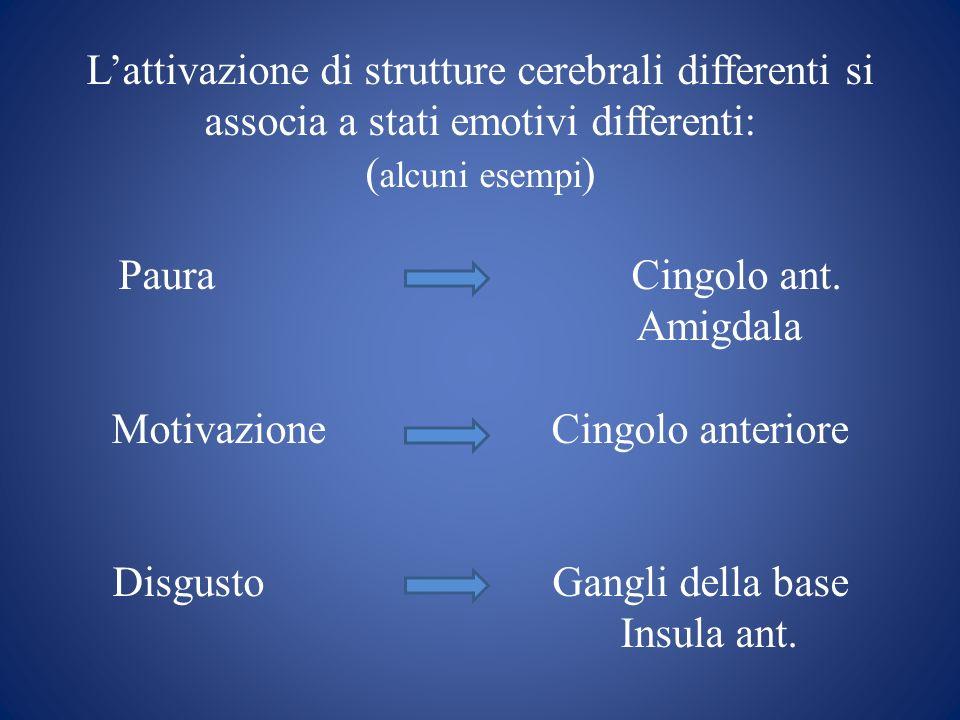 L'attivazione di strutture cerebrali differenti si associa a stati emotivi differenti: (alcuni esempi) Paura Cingolo ant.