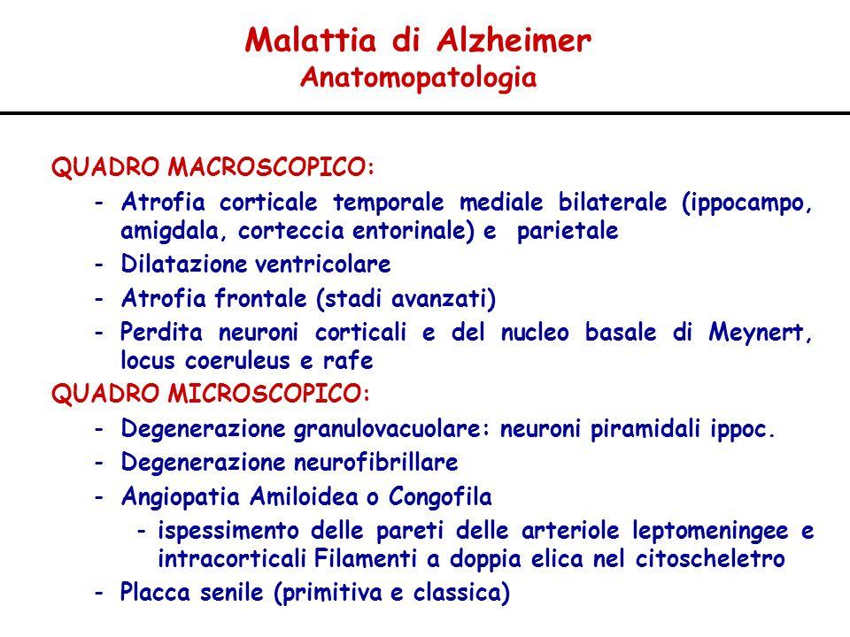 Malattia di Alzheimer Anatomopatologia