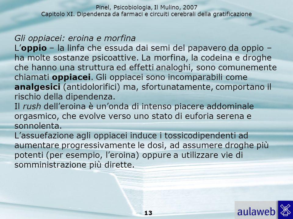 Gli oppiacei: eroina e morfina L'oppio – la linfa che essuda dai semi del papavero da oppio – ha molte sostanze psicoattive.