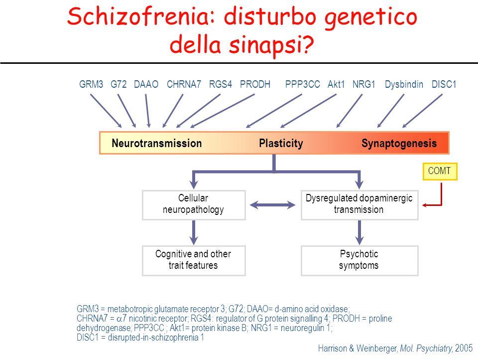 Schizofrenia: disturbo genetico della sinapsi