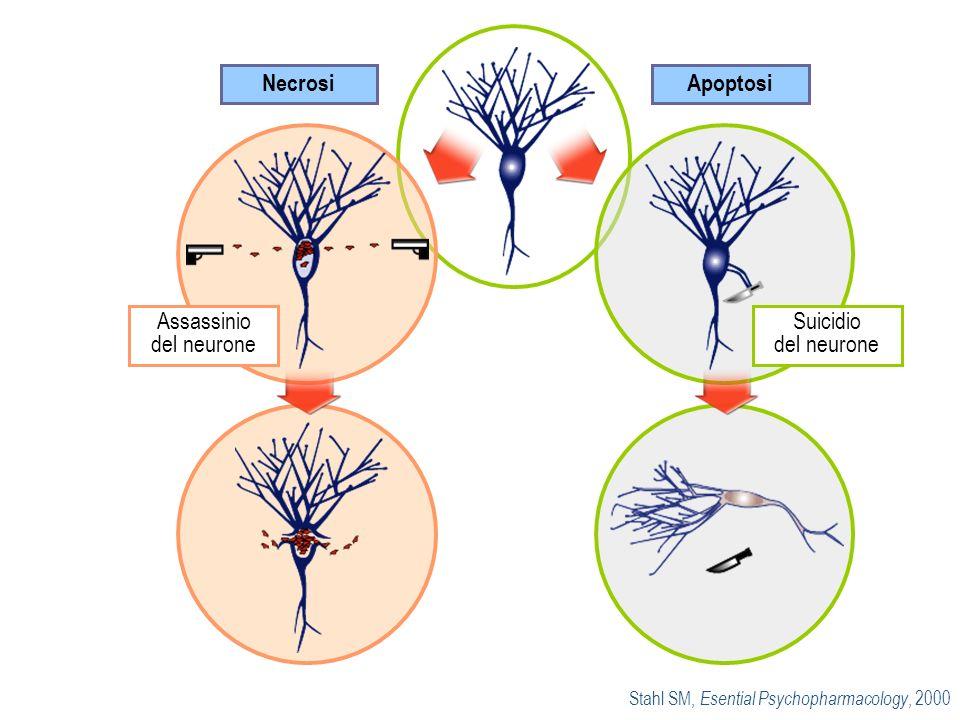 Assassinio del neurone